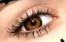 светло-карие глаза. фото